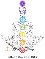 Copy of Chakras